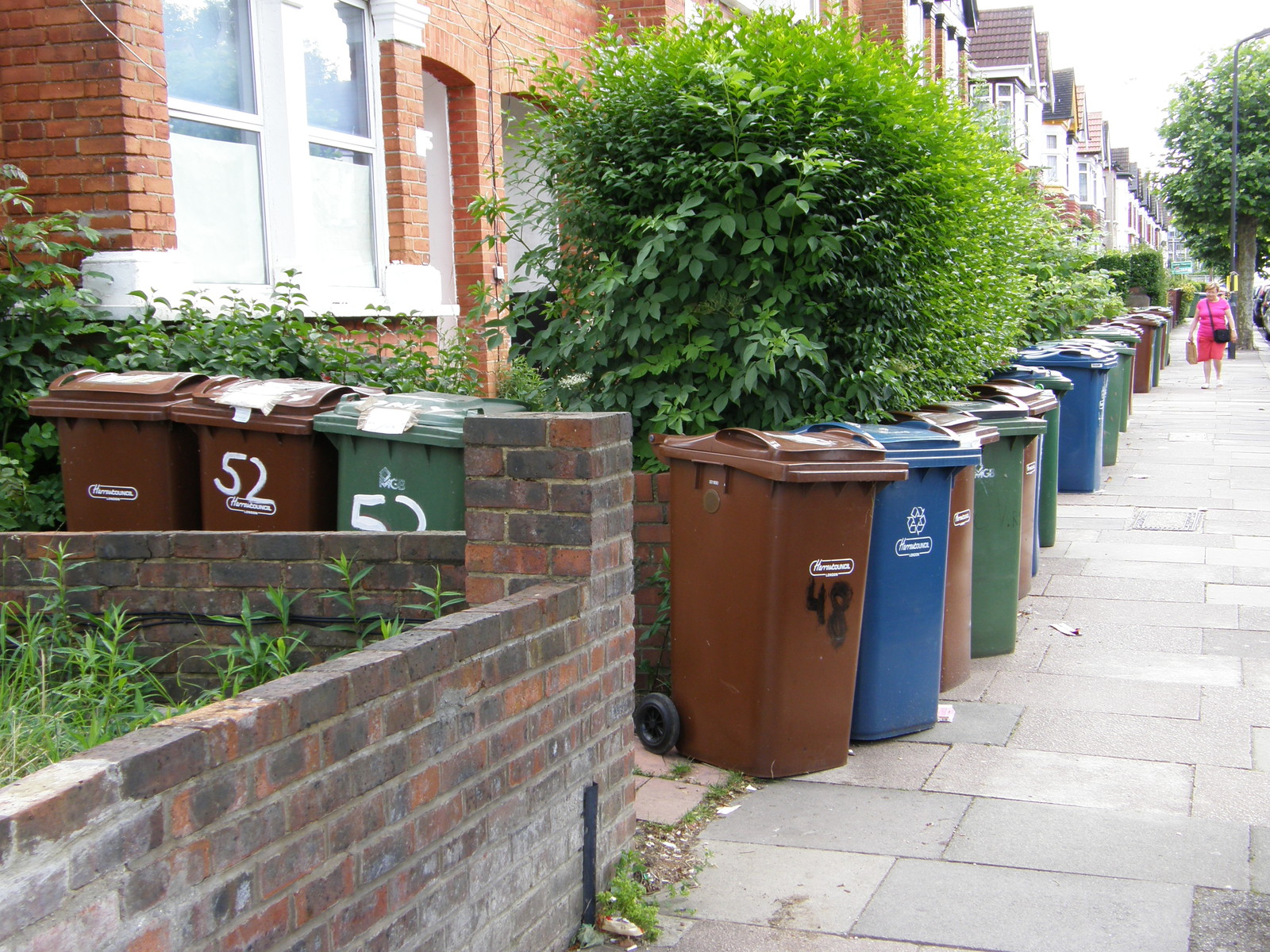 Bin day on Vaughan Road