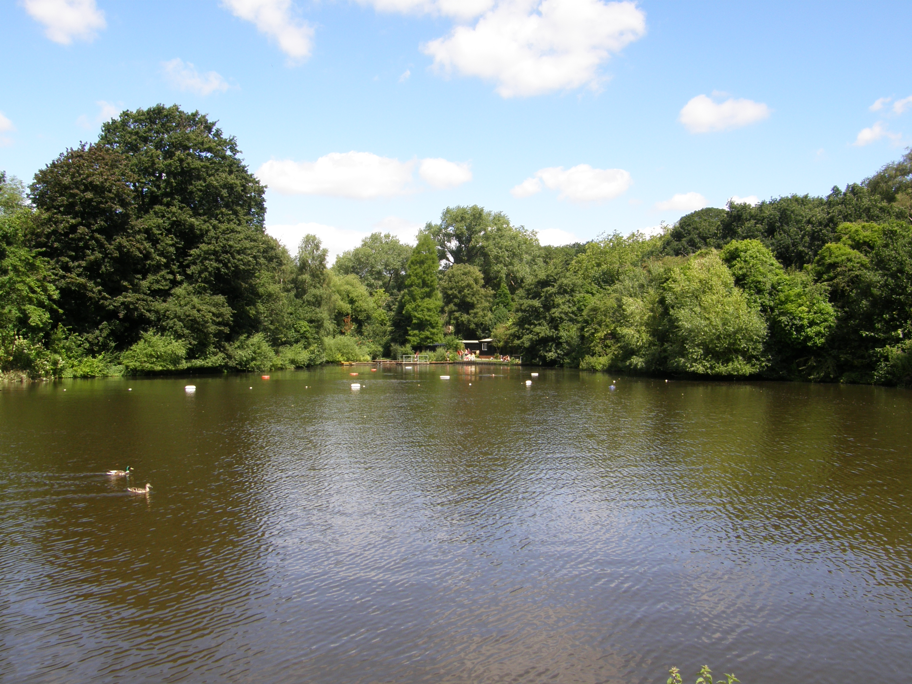 Hampstead Ponds In Hampstead Heath With The Swimming Area In The Distance A Picture From