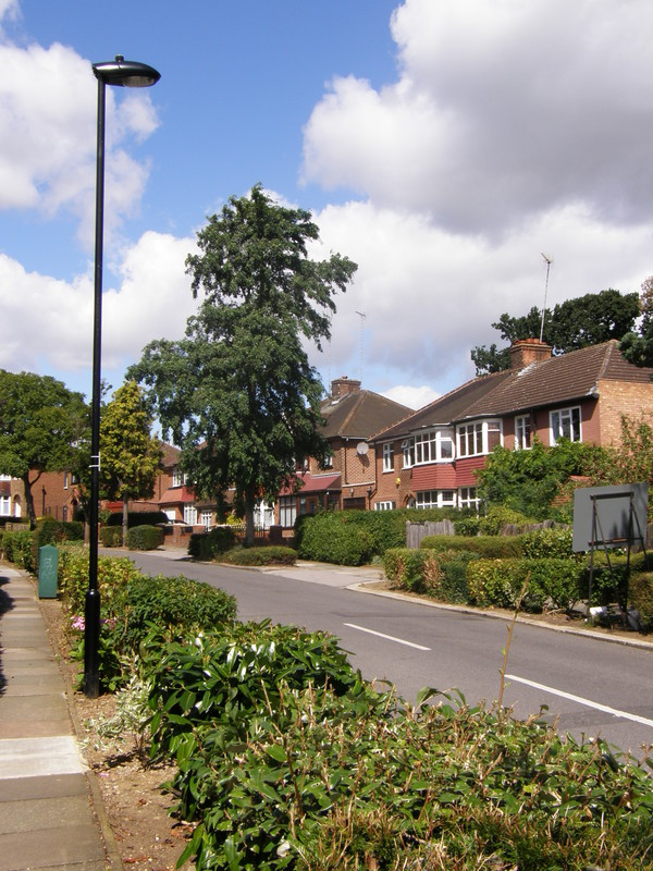 The lovely green suburbs of Oakwood Park Road
