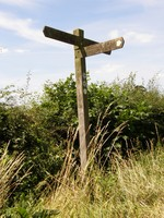 A signpost on the London Loop along Green Lane