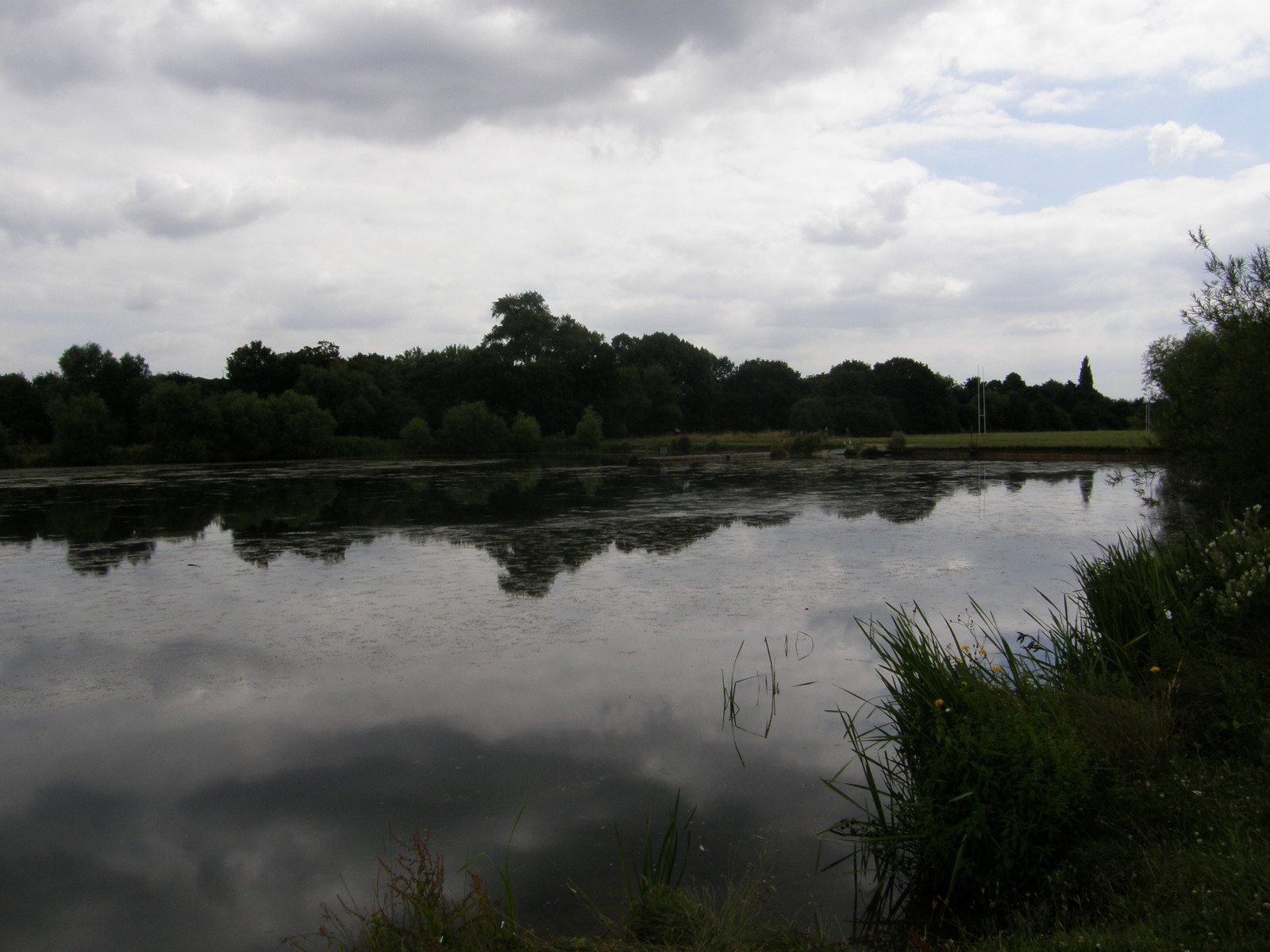 Lake scenery by the River Roding
