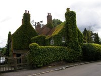 The ivy-clad old rectory in Latimer