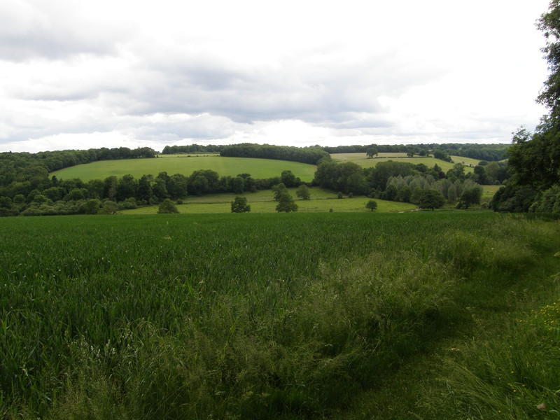 The lush Chess Valley