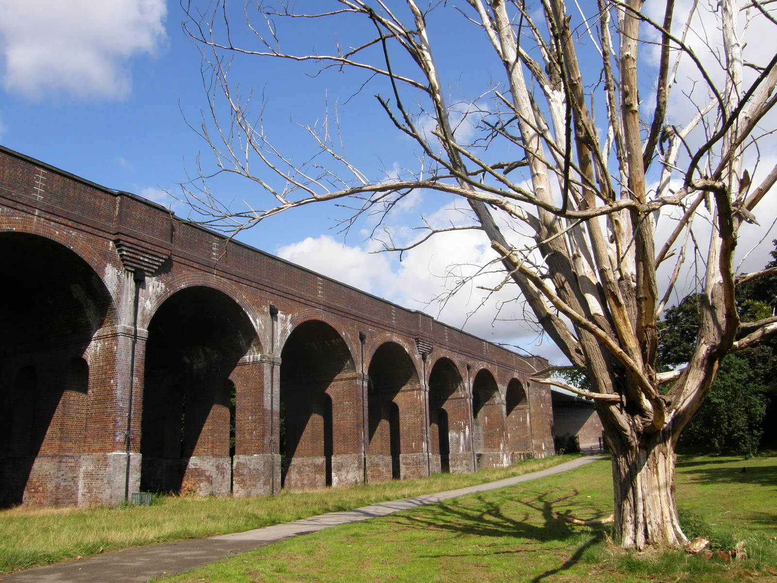 The viaduct in Arnos Park