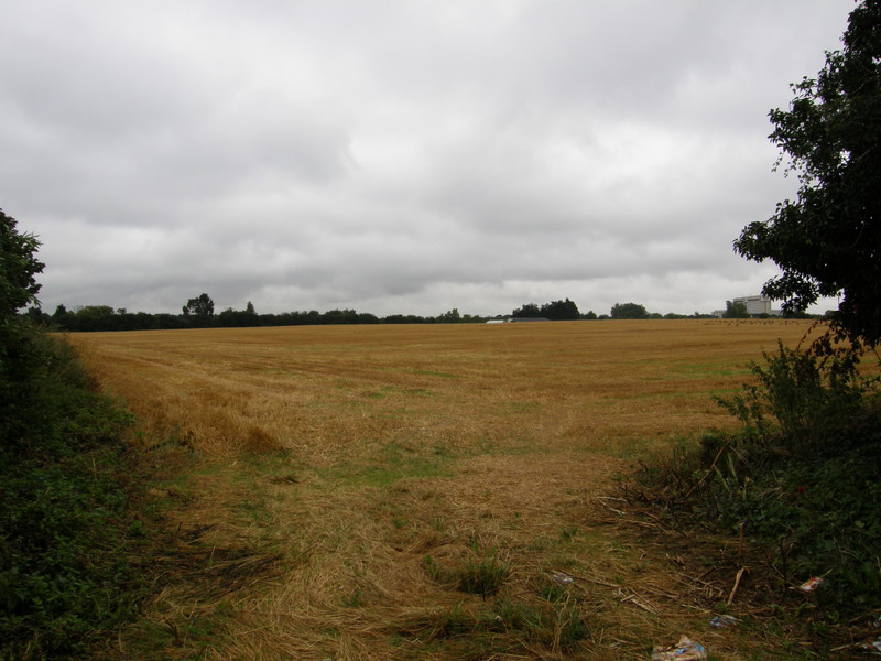 A field north of Harmondsworth Lane