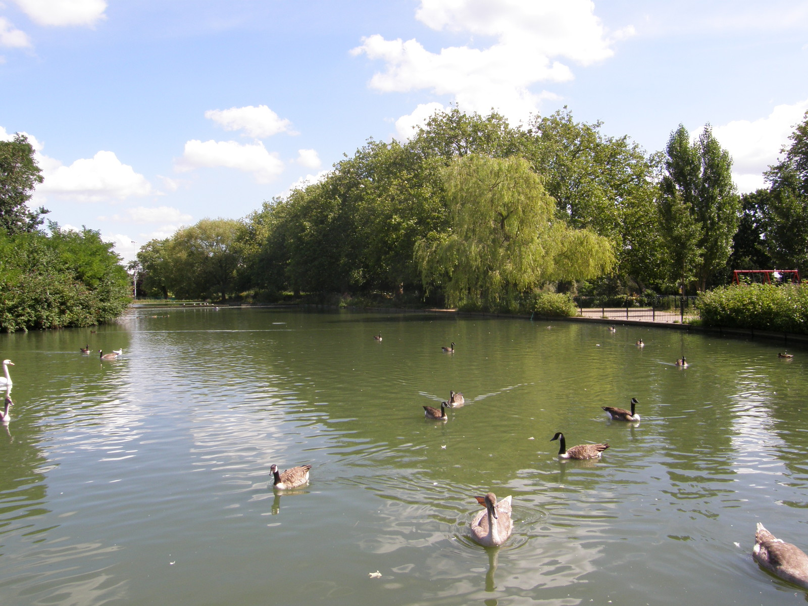 The boating lake in Finsbury Park
