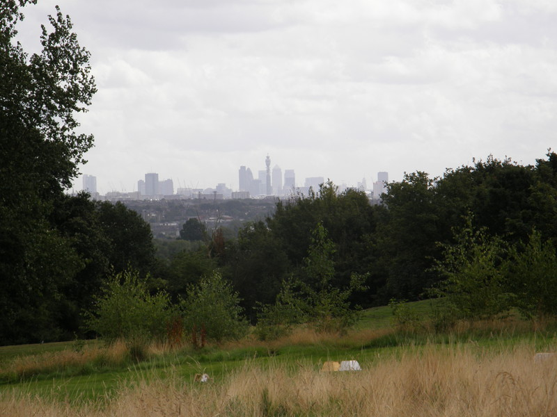 The City from Horsenden Hill